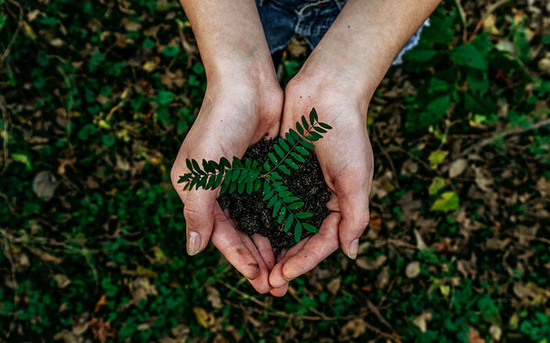 Geração-de-riqueza,-felicidade-e-sustentabolidade-comunicaRH